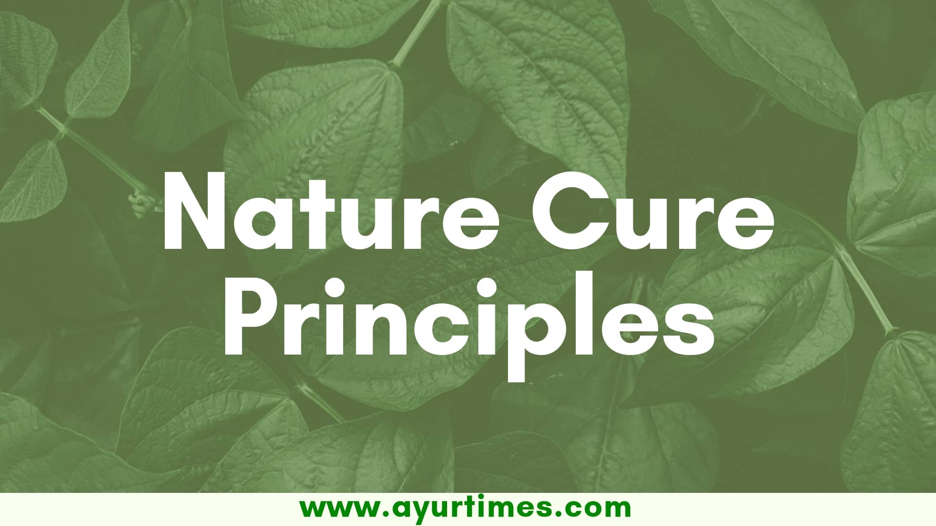 Photo of Basic Principles of Nature Cure