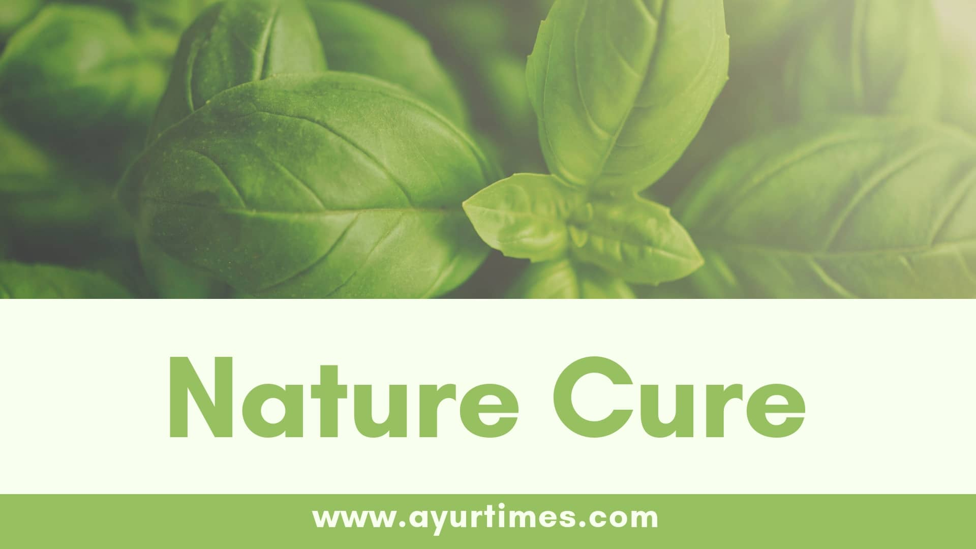 Photo of Nature Cure Philosophy