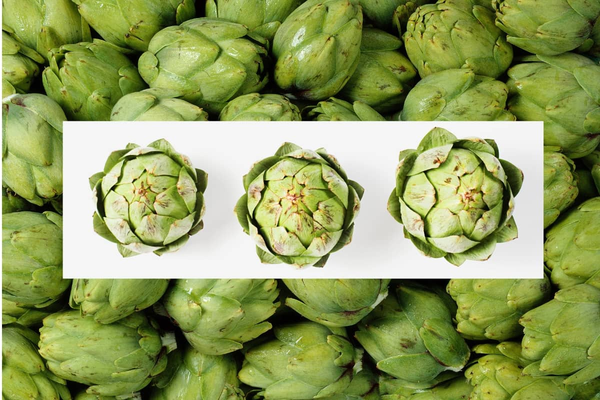 Photo of Artichoke – Benefits, Nutrition, Tea & Side Effects