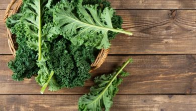 Photo of Kale Side Effects & Controversies
