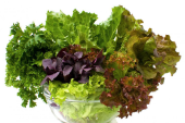 Benefits of Green Leafy Vegetables