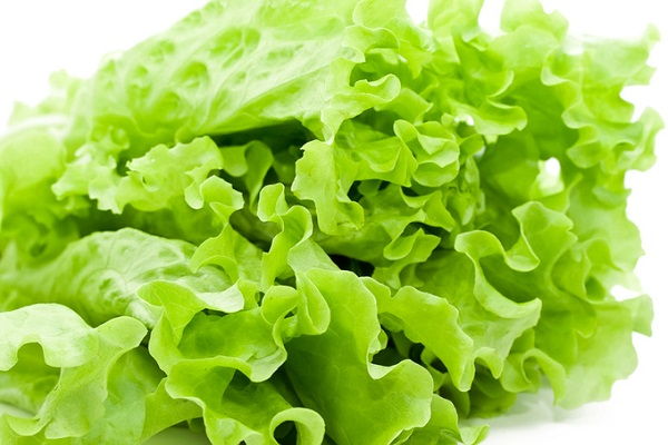 Photo of Health and Nutritional Benefits of Lettuce