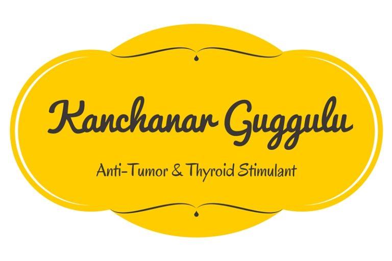 Kanchanar Guggulu