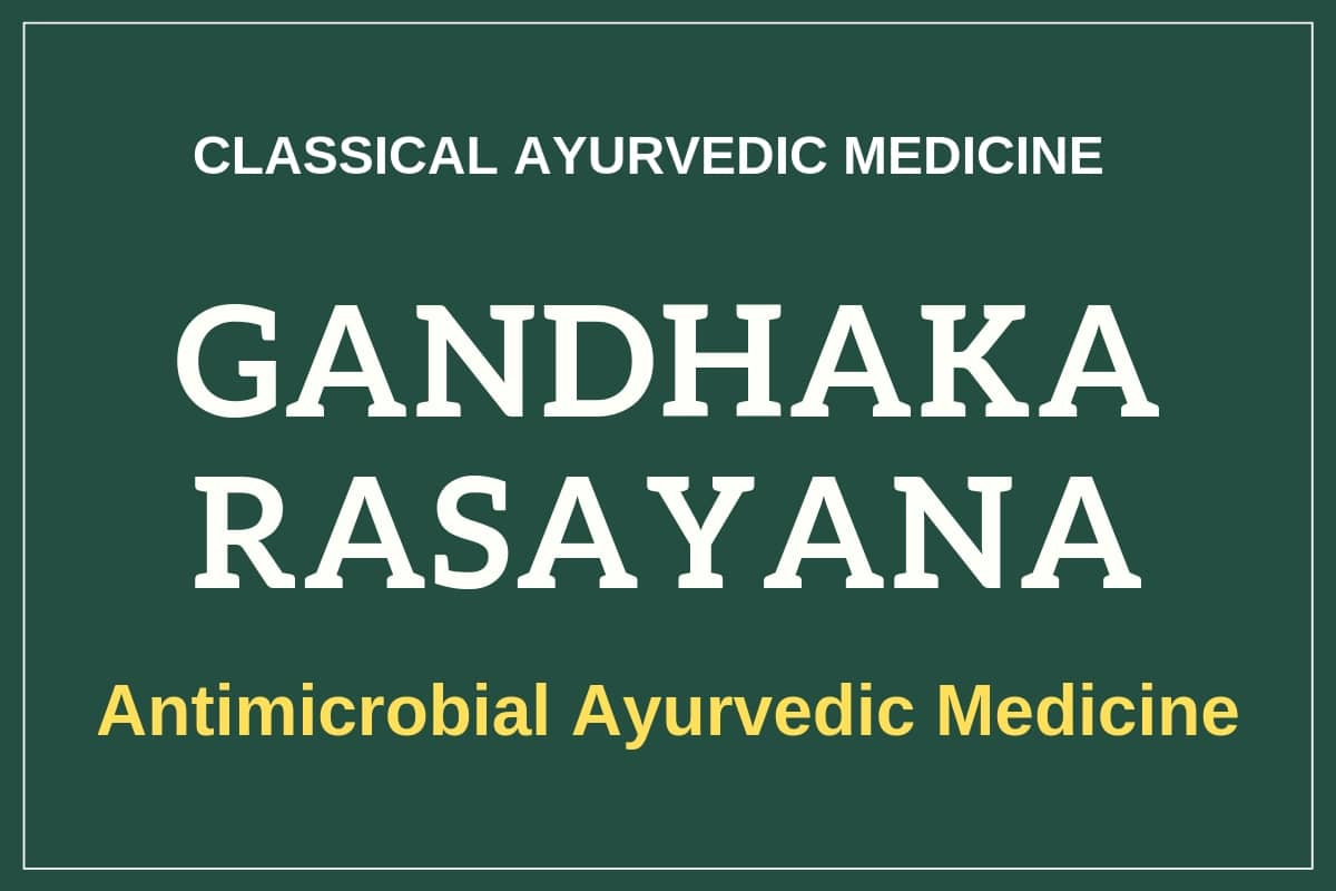 Photo of Gandhak Rasayan Benefits, Uses & Side Effects