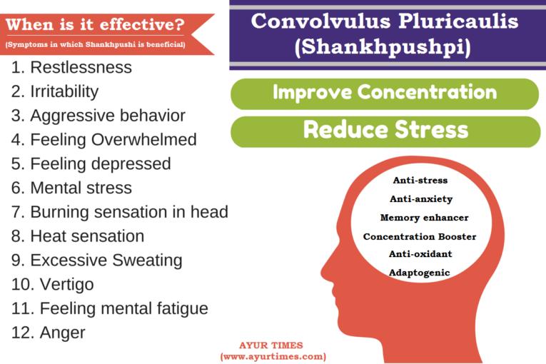 Shankhpushpi (Convolvulus Pluricaulis) Benefits, Uses & Side Effects