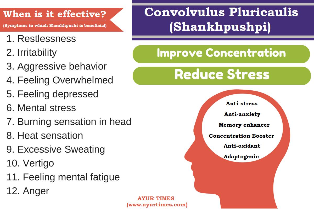 Convolvulus Pluricaulis (Shankhpushpi) Infographic