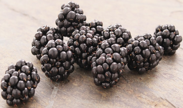 Photo of Blackberries Health Benefits
