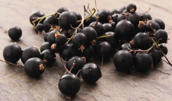 Blackcurrents