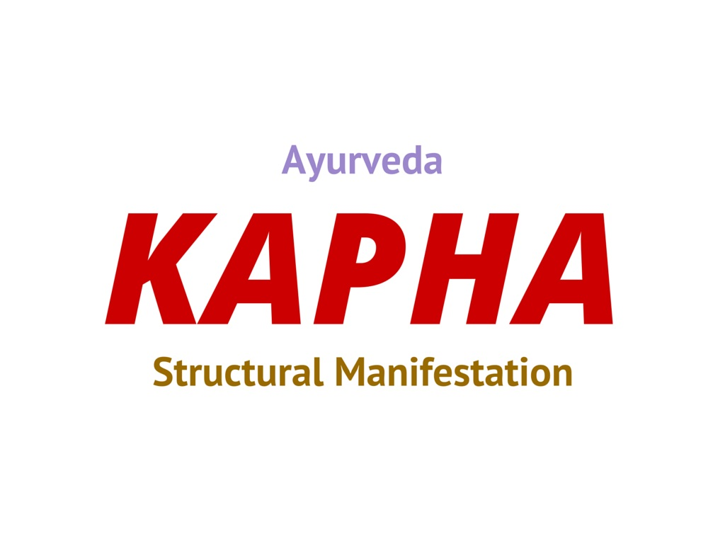 Photo of Kapha Dosha in Ayurveda