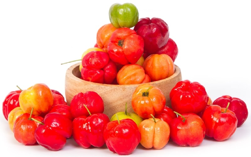 Acerola - Barbados Cherry