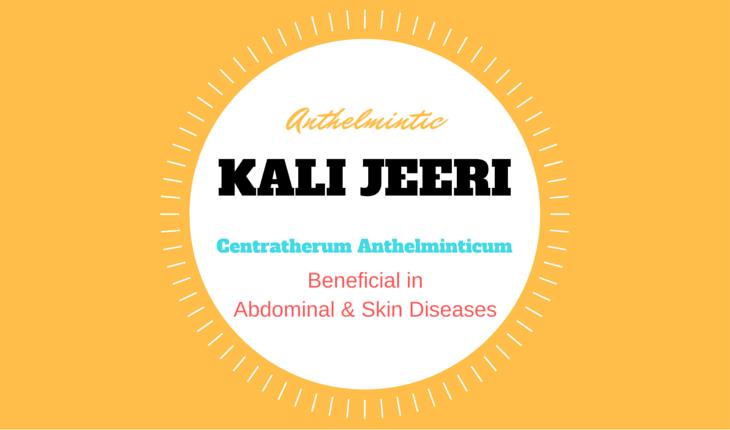 Kali Jeeri (Kalijiri) – Centratherum Anthelminticum