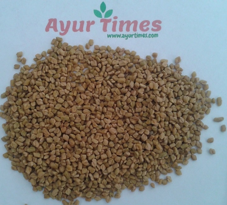 Fenugreek Seeds (Methe )