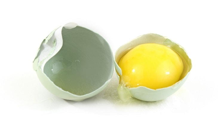egg with yellow yolk