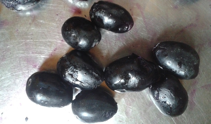 Photo of Jamun (Java Plum) – Syzygium Cumini