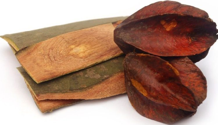 Terminalia Arjuna Bark and Dried Fruits