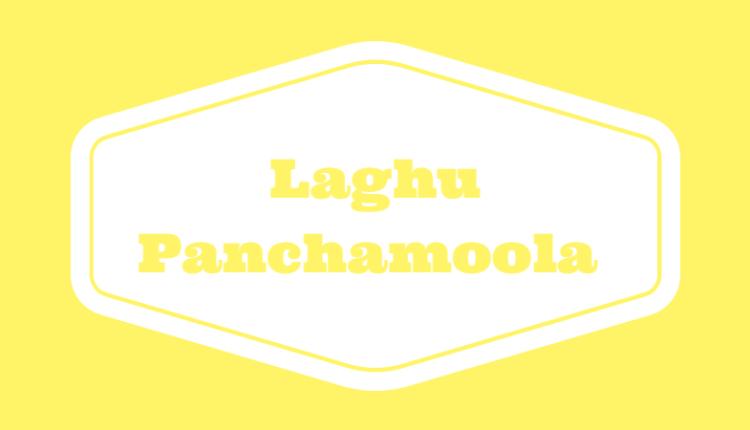 Laghu Panchamoola
