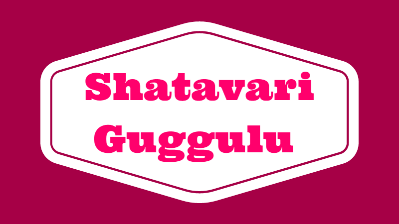 Photo of Shatavari Guggulu