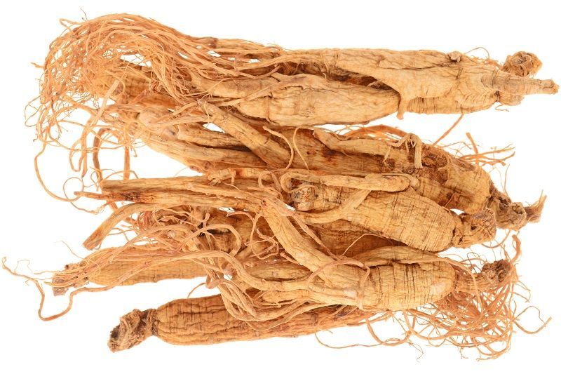 Photo of Panax Ginseng