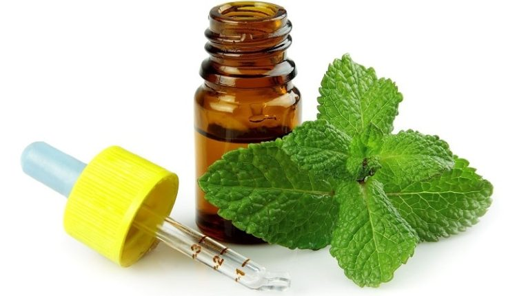 Peppermint Essential Oil, Peppermint Oil