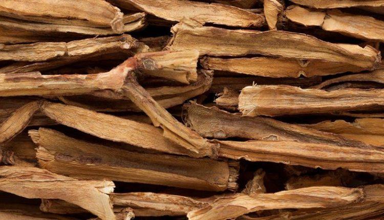 Cissus Quadrangularis (Hadjod) Dry Stems
