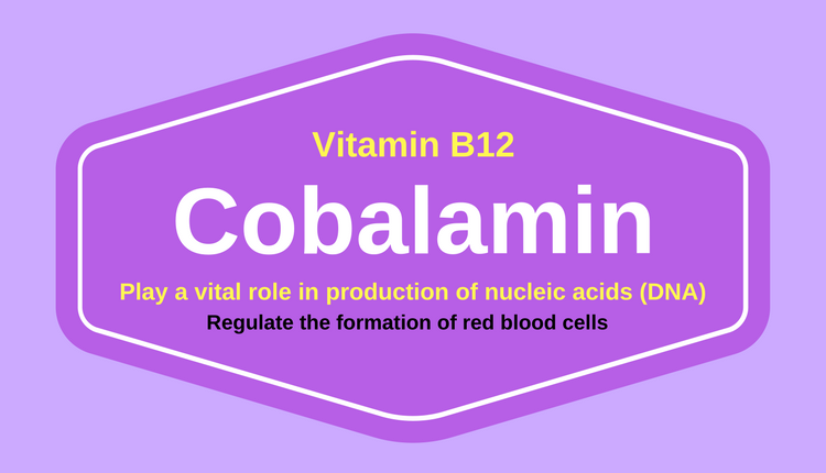 Photo of 8 Amazing Health Benefits of Cobalamin (Vitamin B12)