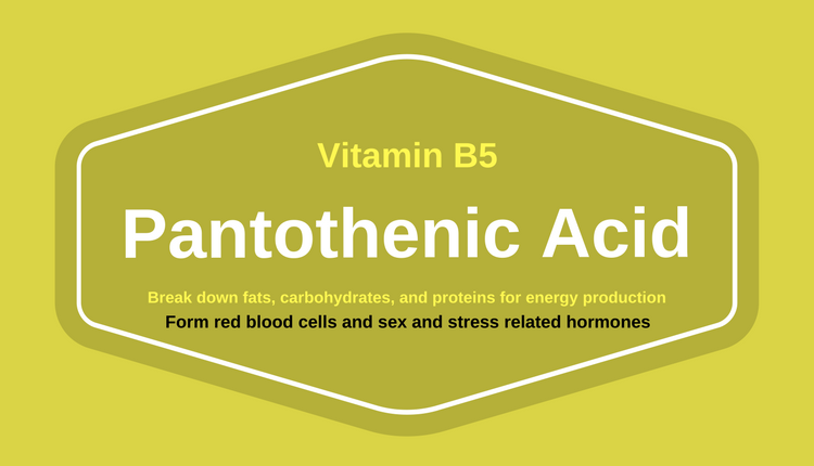 Photo of 7 Amazing Health Benefits of Pantothenic Acid (Vitamin B5)