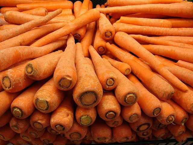 Wild Carrots - Daucus Carota Subsp. Sativus Carrot