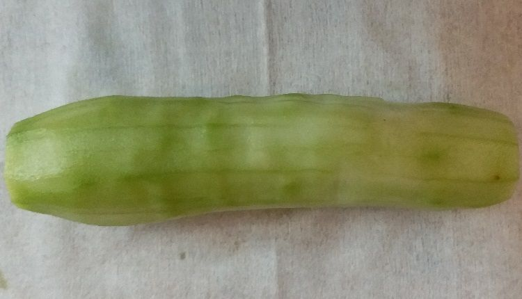 Cucumber without peel