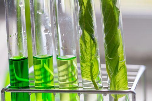 Agad Tantra - Toxicology