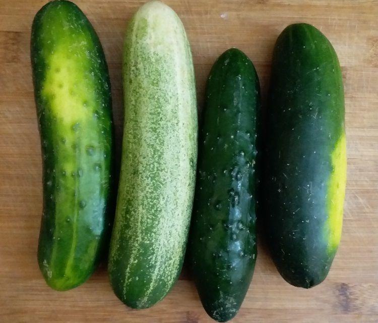 Unpeeled Cucumbers