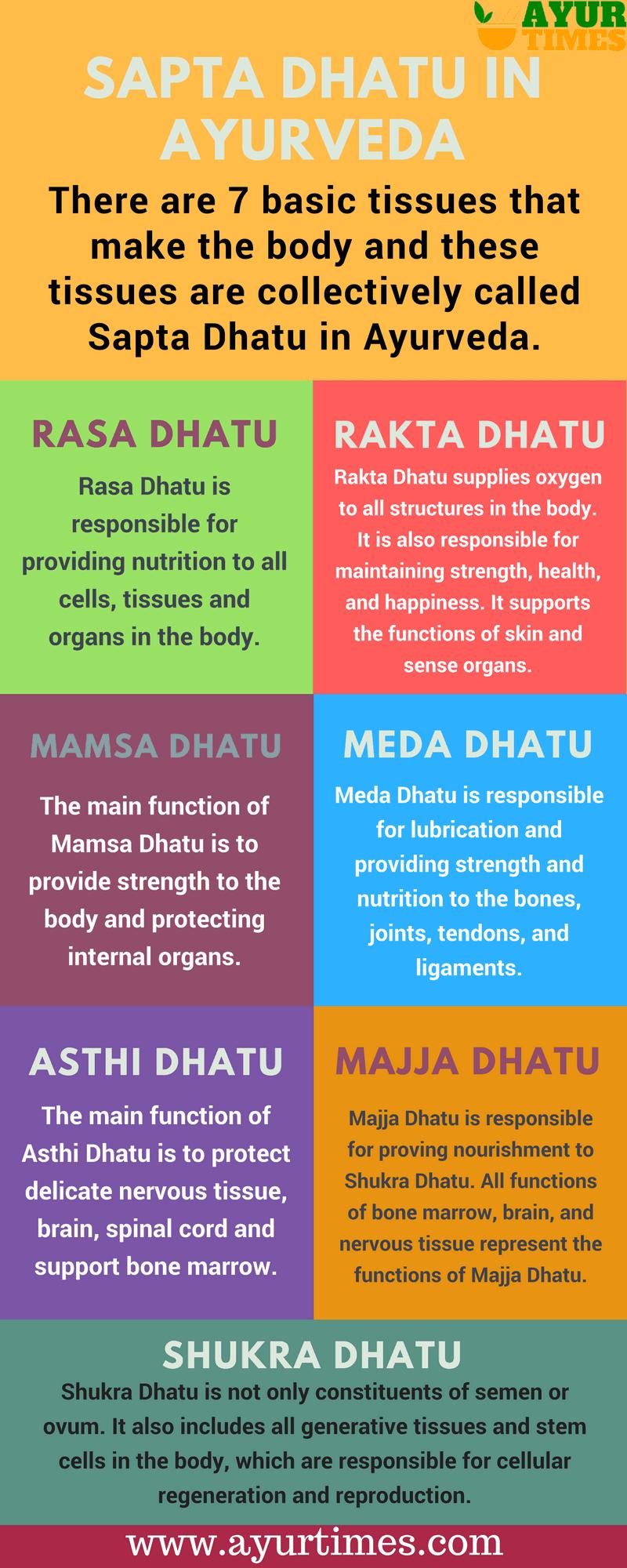 Sapta Dhatu in Ayurveda Infographic