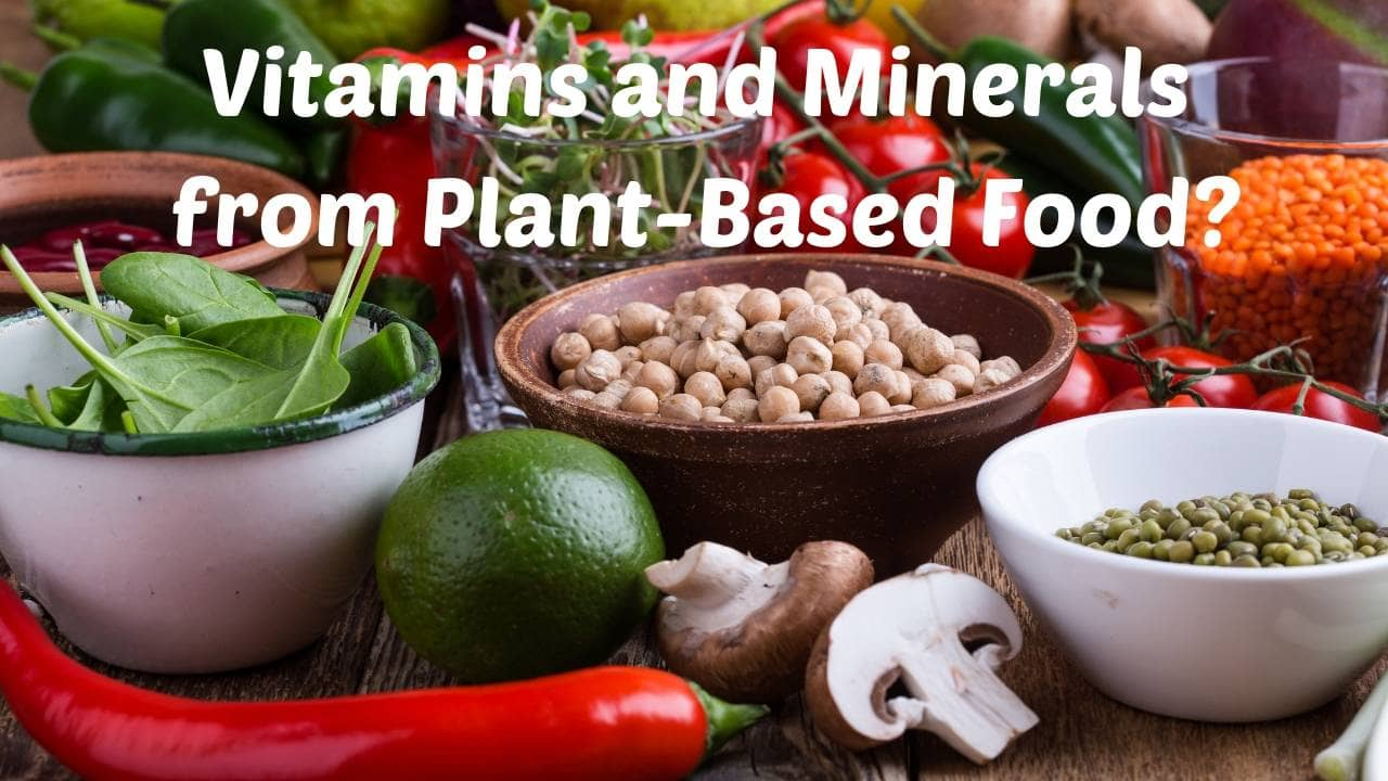 Vitamins and Minerals from Plant-Based Food