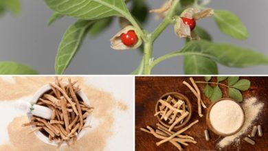Photo of How to Use Ashwagandha For Dementia