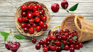 Photo of Boost Your Mental Health with Cherries